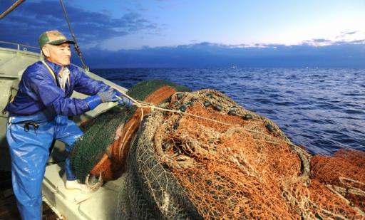 「カニ漁」の画像検索結果