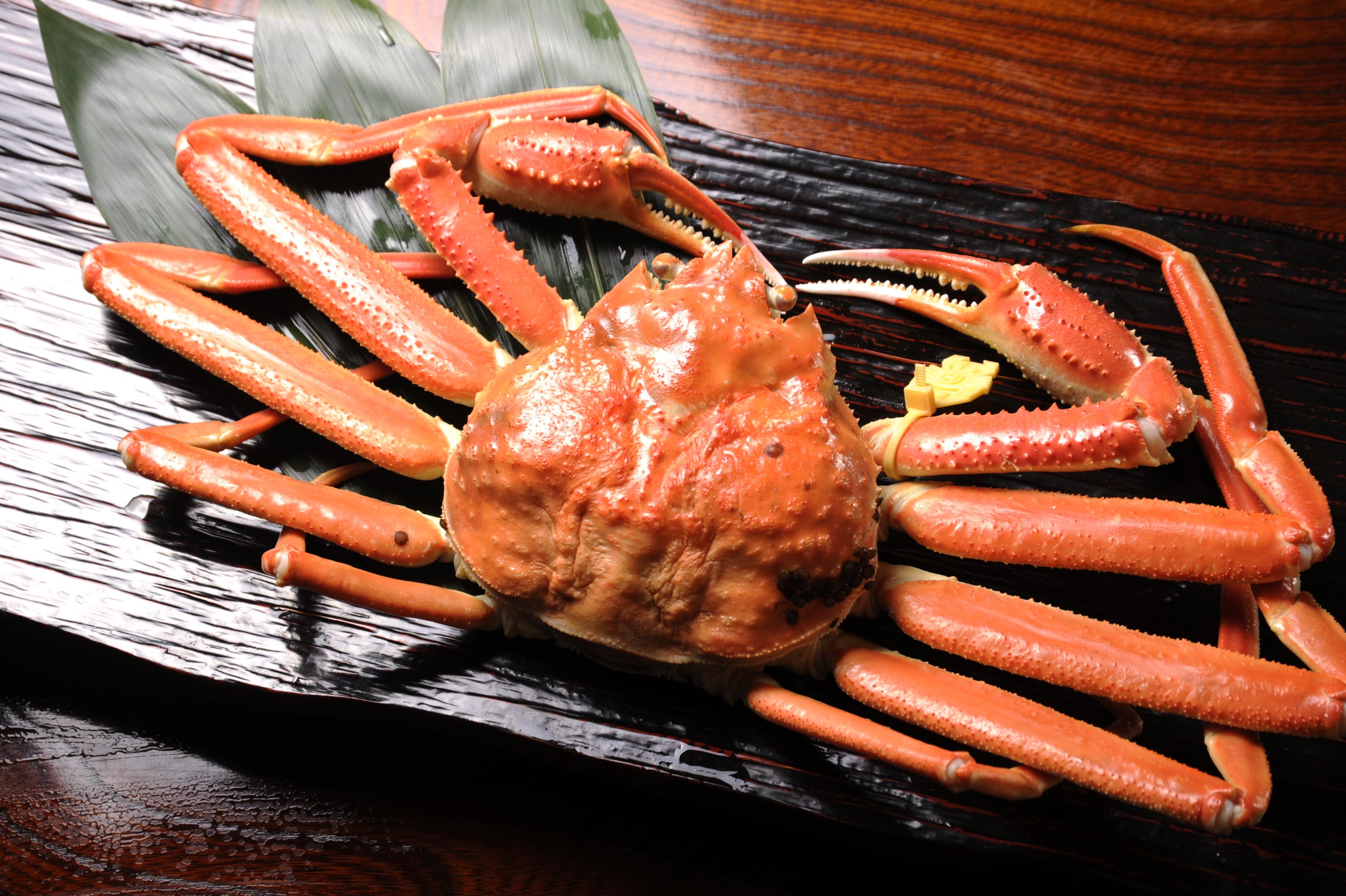 半田市の蟹料理『かに天』最高級のカニでおもてな …